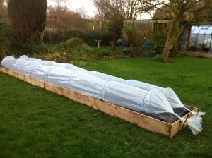new raised bed with cloches