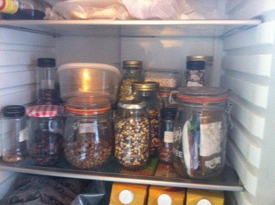 A fridge full of seeds
