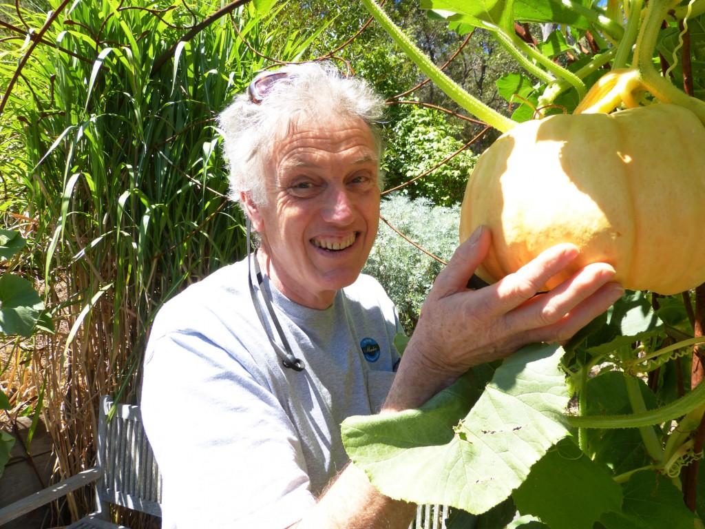 St Erth's pumpkin med res